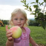 girl-holding-apple-in-orchard