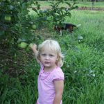 girl-picking-apples-1