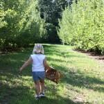 Little Girl Walking in PYO 8.2011