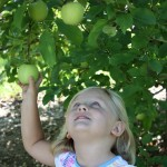 Little Girl in PYO 3 8.2011
