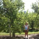 Little Girl in PYO 6 8.2011