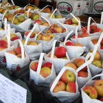 apples at festival 9.2011