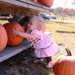 baby picking up pumpkin