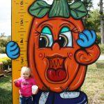 little girl at pumpkin ruler